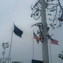 oakland port bikes