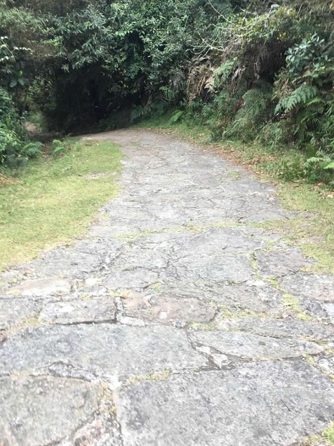 Chicaque concrete driveway